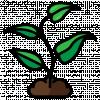 Agriculture et développement rural