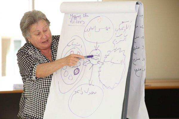 Programme National d'Appui aux Municipalités Libanaises (PNAML)